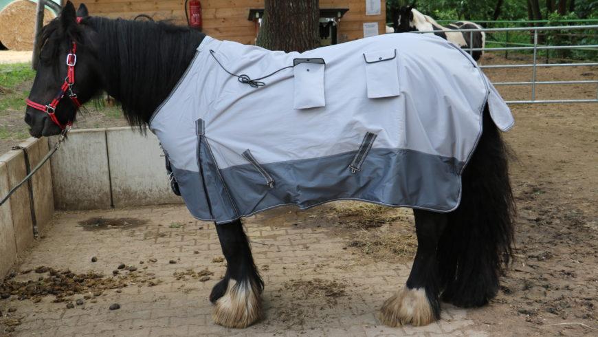 Pferd Magnetfelddecke